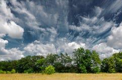 Красивый ландшафт лета Стоковые Фотографии RF