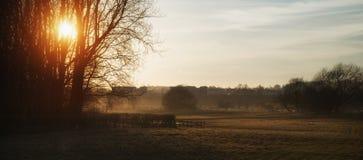 Красивый ландшафт захода солнца светя через деревья на красивое Стоковые Фото