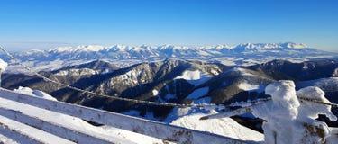 Красивый ландшафт зимы в Карпатах Стоковая Фотография