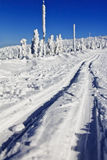 Красивый ландшафт зимы в катании на лыжах Cross County гор Стоковые Фото