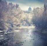 Красивый ландшафт зимы в парке города стоковая фотография rf