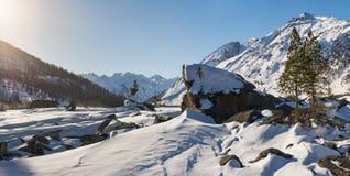 Красивый ландшафт зимы, горы Altai, Сибирь, Россия Стоковые Фото