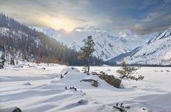 Красивый ландшафт зимы, горы Altai, Сибирь, Россия Стоковые Изображения RF