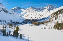 Красивый ландшафт зимы, горы Altai, Сибирь, Россия Стоковое Фото
