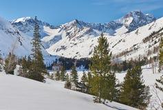 Красивый ландшафт зимы, горы Altai, Сибирь, Россия стоковое изображение rf