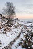 Красивый ландшафт зимы на живом заходе солнца над снегом покрыл c Стоковая Фотография RF