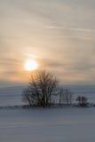 Красивый ландшафт зимы на заходе солнца с снегом Стоковые Изображения