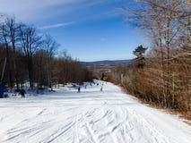 Красивый ландшафт зимы на timberline Западной Вирджинии Стоковое фото RF