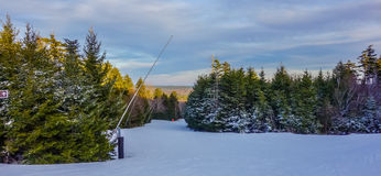 Красивый ландшафт зимы на timberline Западной Вирджинии Стоковая Фотография