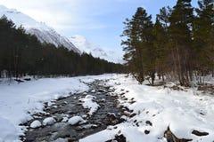 Красивый ландшафт зимы с горами и силуэтами деревьев Стоковые Изображения RF