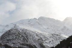 Красивый ландшафт зимы с горами и силуэтами деревьев Стоковое Изображение RF