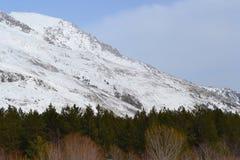 Красивый ландшафт зимы с горами и силуэтами деревьев Стоковое Изображение