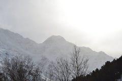 Красивый ландшафт зимы с горами и силуэтами деревьев Стоковая Фотография RF