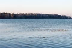Красивый ландшафт зимы с замороженным озером Стоковое Изображение