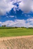 Красивый ландшафт и облачное небо весны Стоковое фото RF