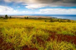 Красивый ландшафт Кауаи природы Стоковое Изображение