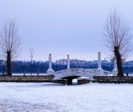 красивый ландшафт моста на заднем плане домов города Стоковая Фотография RF