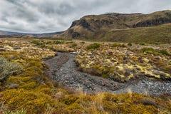 Красивый ландшафт национального парка Tongariro Стоковое Изображение RF