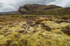 Красивый ландшафт национального парка Tongariro Стоковые Изображения RF