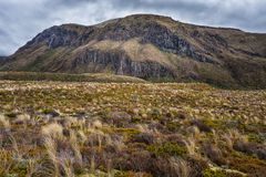 Красивый ландшафт национального парка Tongariro Стоковые Фотографии RF
