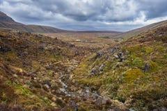 Красивый ландшафт национального парка Tongariro Стоковое Фото