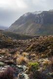 Красивый ландшафт национального парка Tongariro Стоковое фото RF
