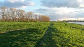 Красивый ландшафт на Rhein Стоковое Изображение RF
