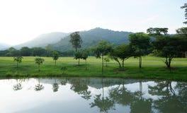 Красивый ландшафт отражения дерева в озере Стоковое Изображение RF