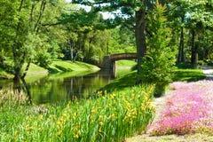 Красивый ландшафт парка с рекой, мостом и цветками Стоковые Фотографии RF