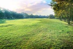 Красивый ландшафт перспективы зеленого парка окружающей среды и sm Стоковое Изображение RF