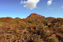Красивый ландшафт природы с горами и небом Стоковые Фотографии RF