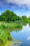 Красивый ландшафт реки лета Стоковое фото RF