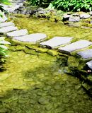 Красивый ландшафт сада Стоковые Фотографии RF