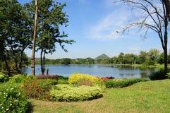 Красивый ландшафт - сад с прудом стоковое изображение rf