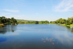 Красивый ландшафт - сад с прудом стоковое изображение