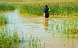 Красивый ландшафт, сельская местность Вьетнама Стоковое Изображение RF