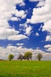 Красивый ландшафт страны с белыми облаками на небе Стоковая Фотография RF
