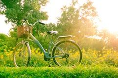 Красивый ландшафт с велосипедом на парке стоковое изображение