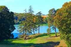 Красивый ландшафт с живописными озером и деревьями стоковые фотографии rf