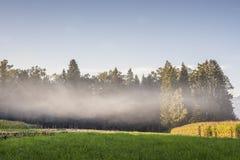 Красивый ландшафт с зеленым лугом Стоковая Фотография