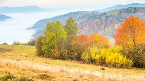 Красивый ландшафт с холмами и mountais сток-видео