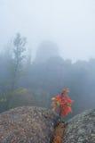 Красивый ландшафт утра в горах запас Природа Сибиря Стоковое Изображение