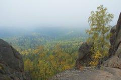 Красивый ландшафт утра в горах запас Природа Сибиря Стоковые Изображения RF