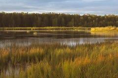 Красивый ландшафт утра на защищенное резервуара На посещении на бабушке Стоковое фото RF
