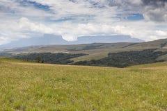 Красивый ландшафт характерный для Gran Sabana - Venezue Стоковое фото RF