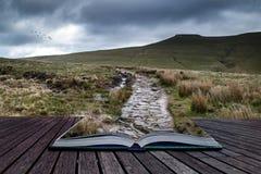 Красивый ландшафт Brecon светит национальный парк Стоковая Фотография RF