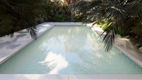 Красивый бассейн на потерянном тропическом острове на ясный солнечный день Закрепленная петлей реалистическая 3D анимация акции видеоматериалы