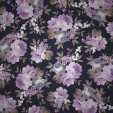 Красивый безшовный винтажный цветочный узор Стоковая Фотография