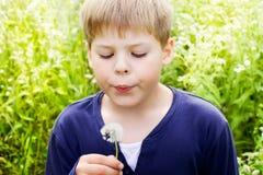 Красивый белокурый одуванчик дуновения мальчика Стоковое фото RF