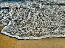 Красивый бечевник пляжа Калифорнии захода солнца Стоковое фото RF